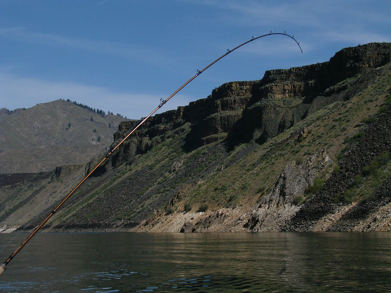 Boise River South Fork. Photo Courtesy of Idaho Fish and Game