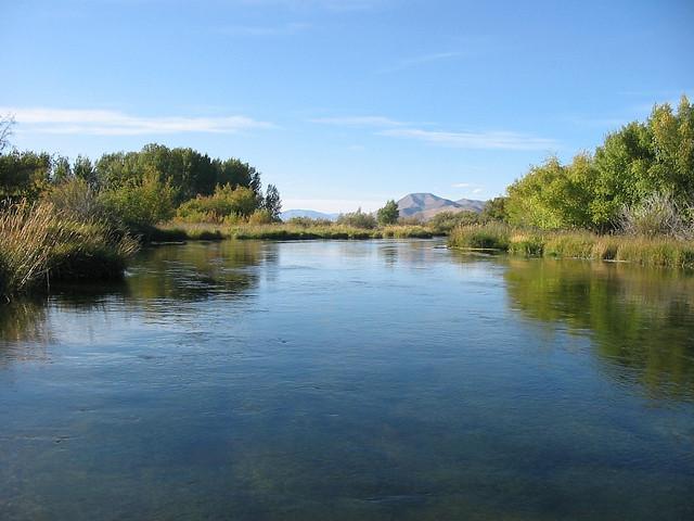 Silver Creek. Photo Courtesy of Idaho Fish and Game