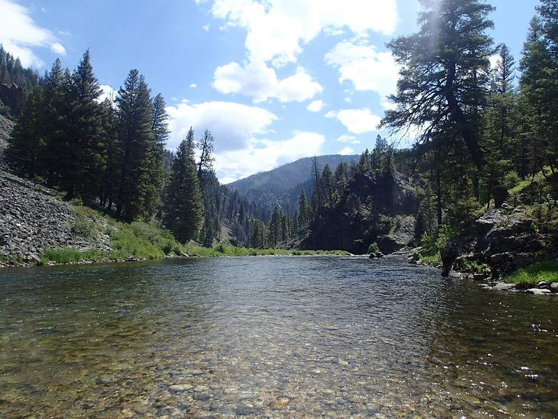 Middle Fork Headwaters. Photo Courtesy of Idaho Fish and Game