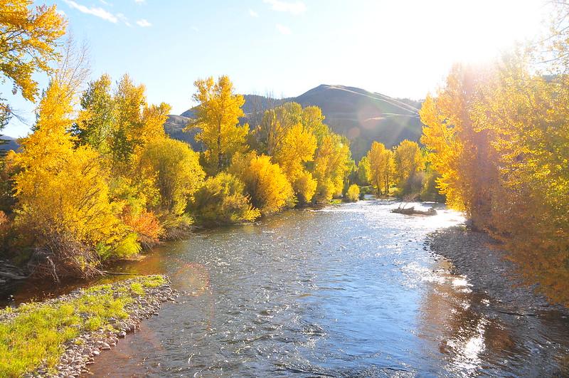 Big Wood River. Photo Courtesy of Idaho Fish and Game